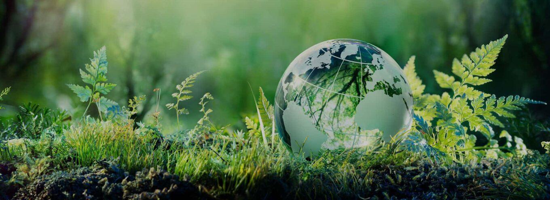 Sistemas de reciclado y medio ambiente